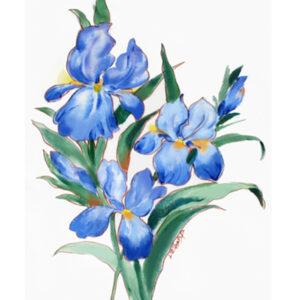 Miami hand painted irises textile design